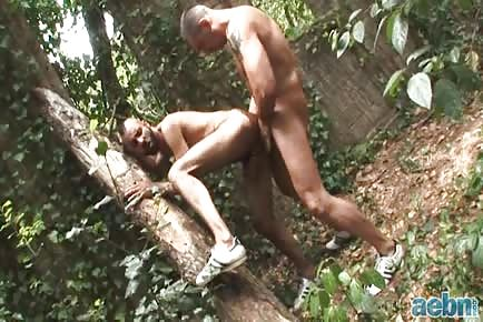 Meet Me At The Tree Daddy-Outdoor Encounters