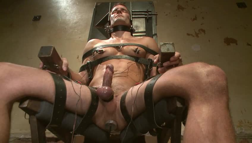 Hot Guy Getting Balls And Ass Hole Tortured With Butt Plug-5219